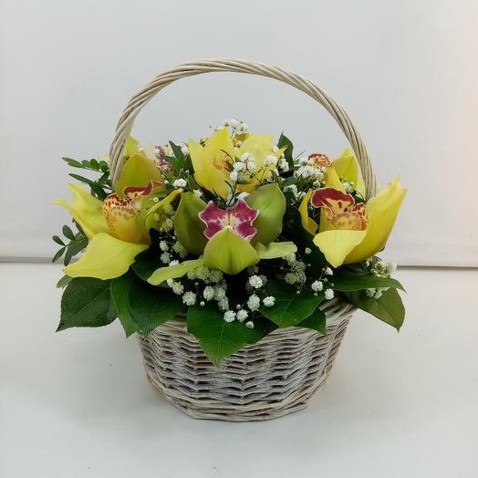 Солнечные тропики: букеты цветов на заказ Flowwow