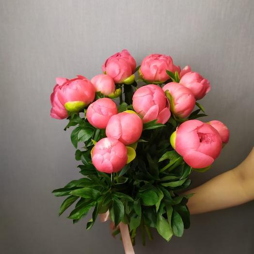Пионы 15: букеты цветов на заказ Flowwow