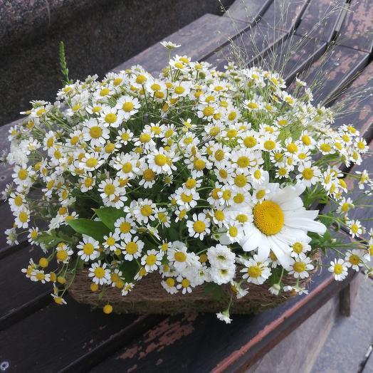 Корзиночка ромашек для романтиков: букеты цветов на заказ Flowwow