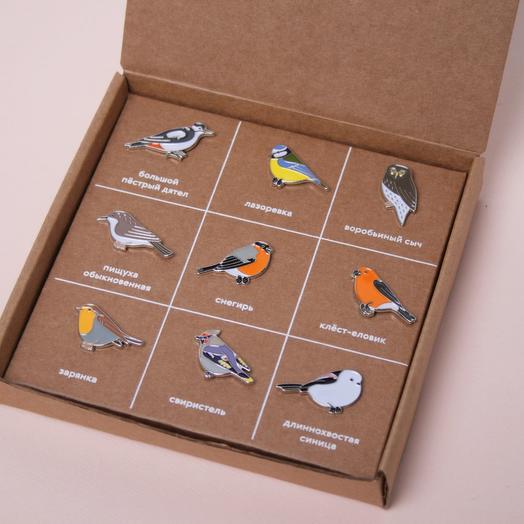 Набор значков «Птицы Северо-Запада»