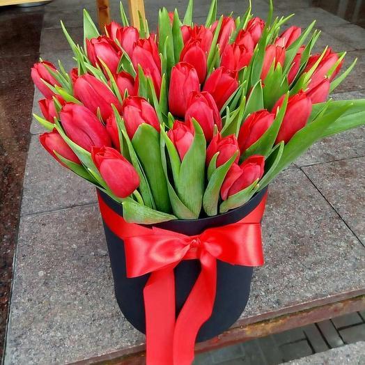 35 красных тюльпана