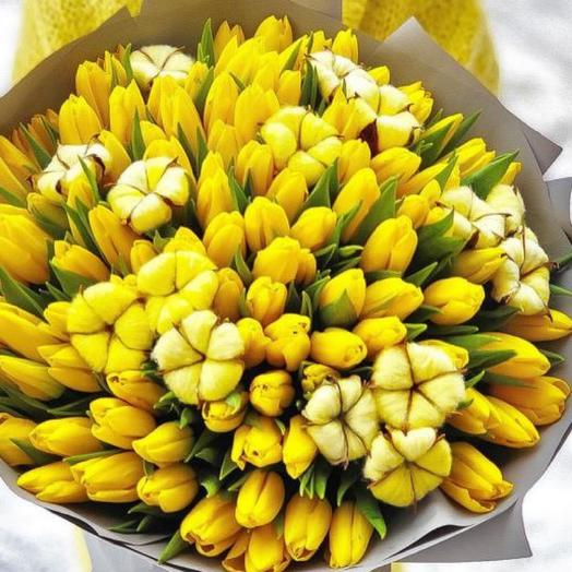 101 солнечный тюльпан