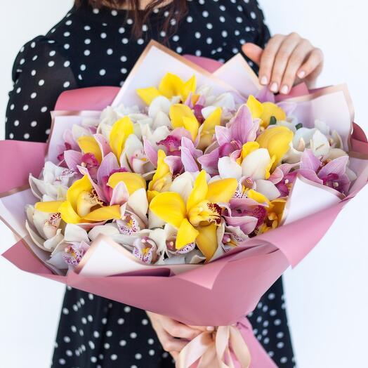 Букет из 33 орхидей «Райская птица»