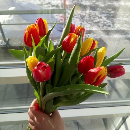 Букет из 17 разноцветных тюльпанов: букеты цветов на заказ Flowwow