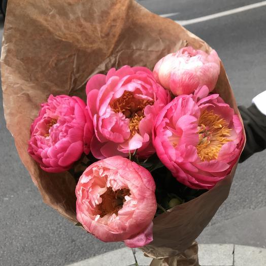 Огромные коралловые пионы по супер цене: букеты цветов на заказ Flowwow