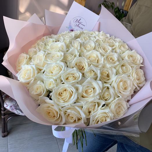 51 роза Голландия в стильной упаковке