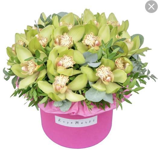 Орхидеи в розовой коробочке