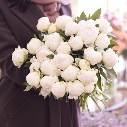 25 белых пионов Премиум: букеты цветов на заказ Flowwow