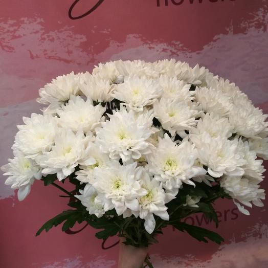 7 белых хризантем: букеты цветов на заказ Flowwow