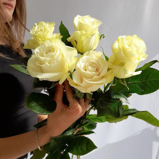Роза белая импорт