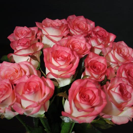 Роза Блаш 15 шт