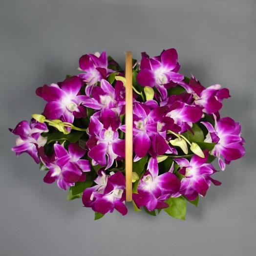 Корзина с тайскими орхидеями