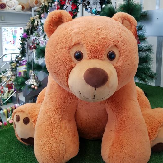 Медведица 8🦋
