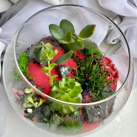 """Florarium """" raspberry»"""