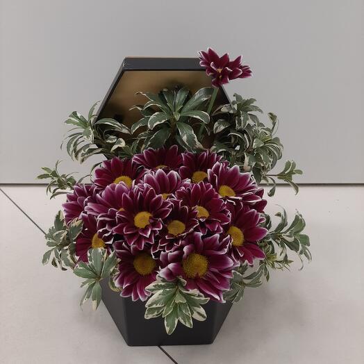 Цветы в коробке.Модный комплимент