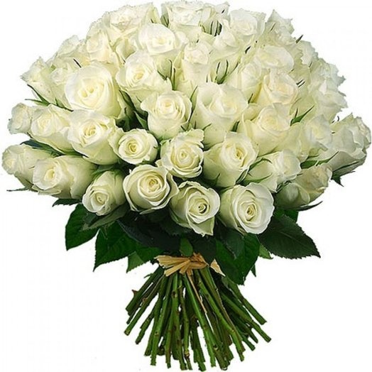 51 роза (70см): букеты цветов на заказ Flowwow