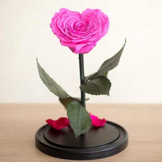 Роза в колбе Премиум малиновая: букеты цветов на заказ Flowwow
