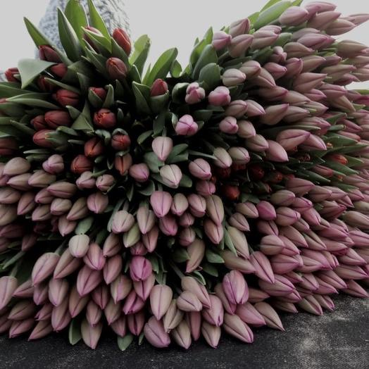 Букет из тюльпанов микс