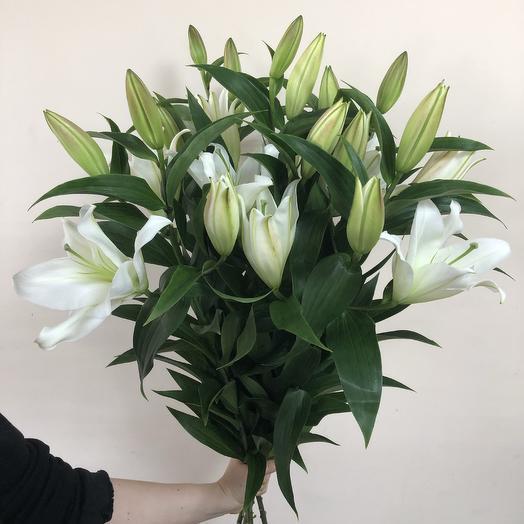 5 lilies