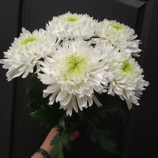 Крым: букеты цветов на заказ Flowwow