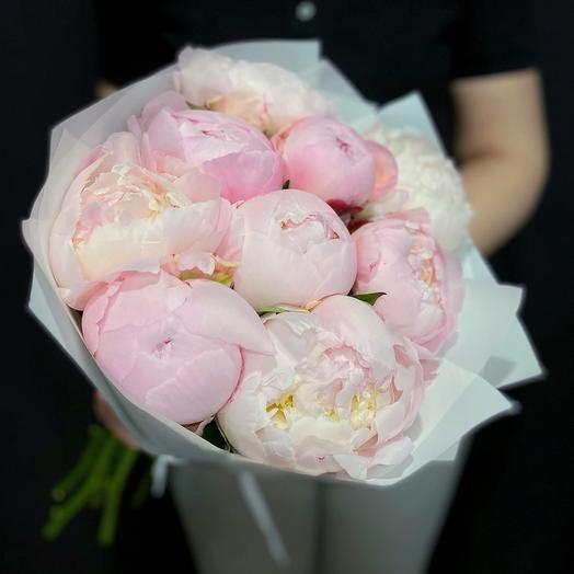 Букет из 9 Нежно-Розовых голладских Пионов: букеты цветов на заказ Flowwow