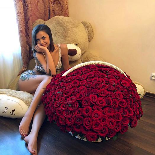 Большая корзина с 301 красной розой