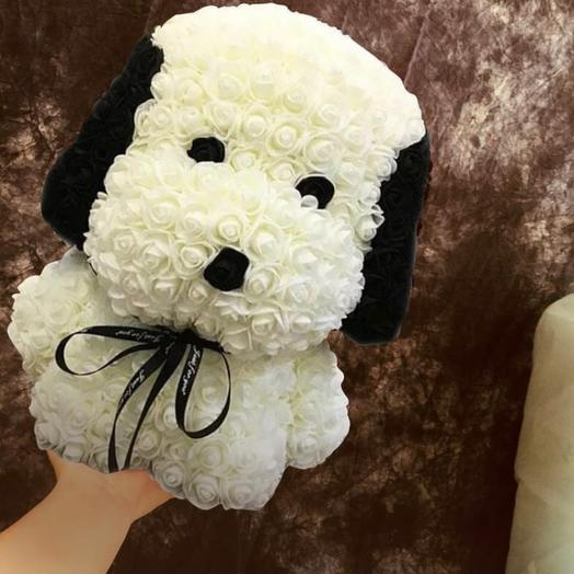 Собака из фаомирана