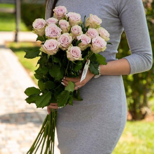 """Розы """"Silverado"""" светло-фиолетовыe 15 шт"""