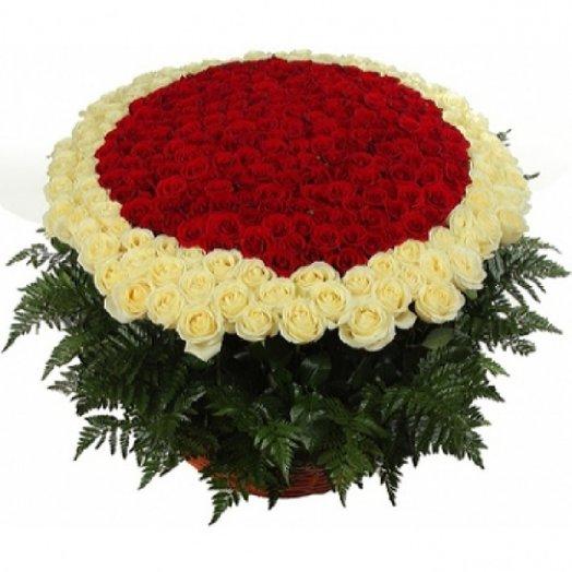 Шикарная корзина из 251 розы с папоротником: букеты цветов на заказ Flowwow