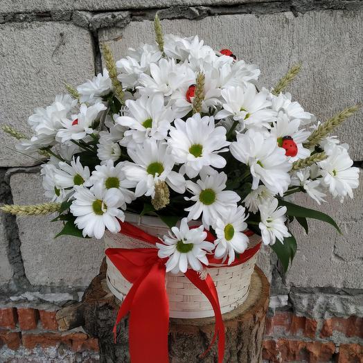"""Ромашковое 🌼🌼🌼 поле"": букеты цветов на заказ Flowwow"