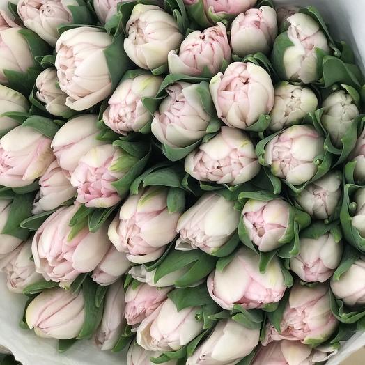 49 Нежных Тюльпанов  в Крафте: букеты цветов на заказ Flowwow