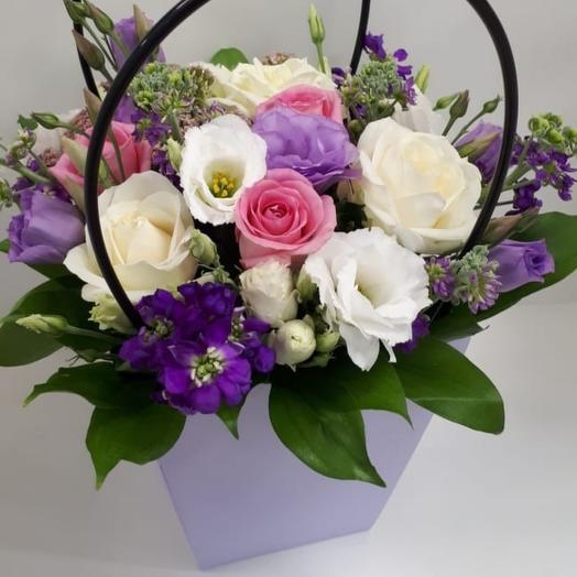 Фиолетовая милашка