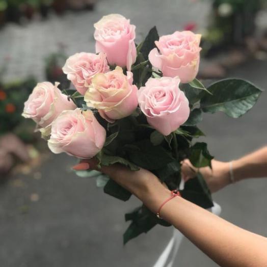 Розы Пинк облако букет