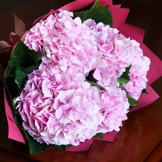 Букет розовой горензии
