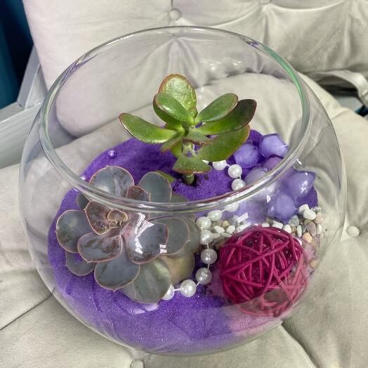 Флорариум Роза