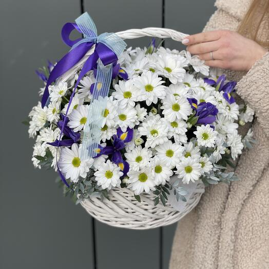 Basket Basket of chrysanthemums and irises