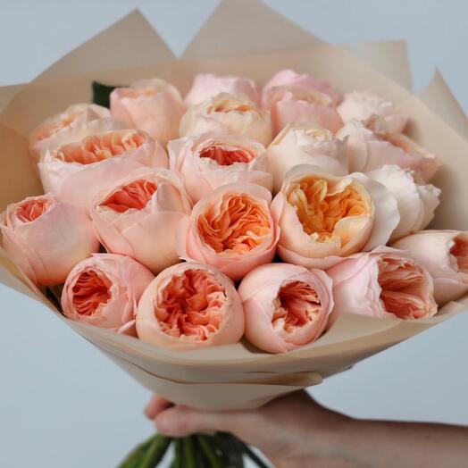 Розы Джульетта 19