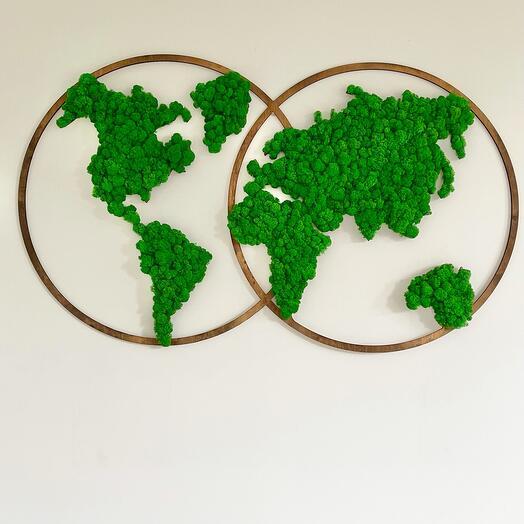 Карта мира на полушариях большая