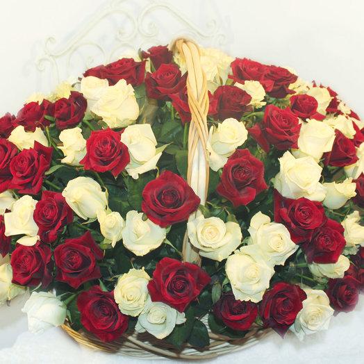 151 красно-белая роза в большой корзине