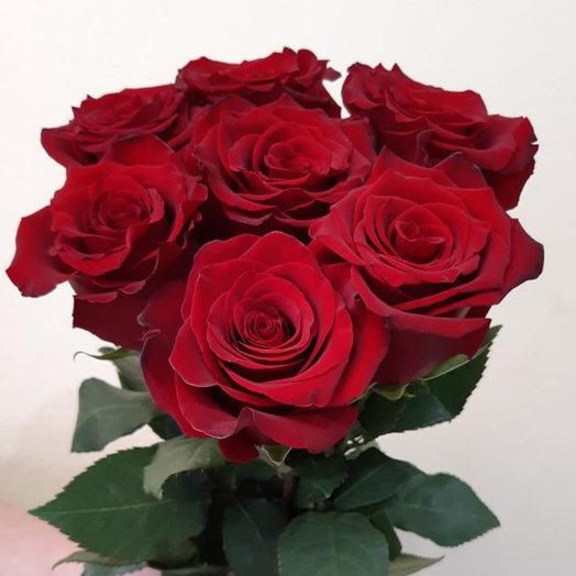 Букет из 7 крупных красных роз Эквадор
