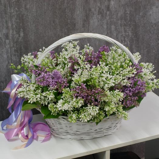 Весна внутри: букеты цветов на заказ Flowwow