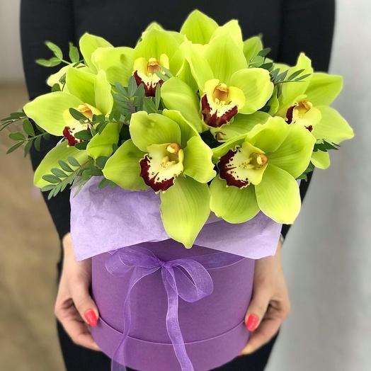 Яркие орхидеи в шляпной