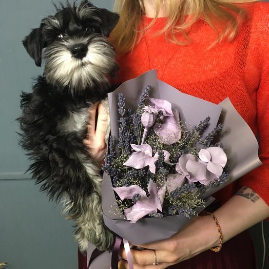 Букет с лавандой: букеты цветов на заказ Flowwow