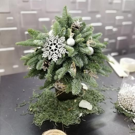 Christmas tree: flowers to order Flowwow
