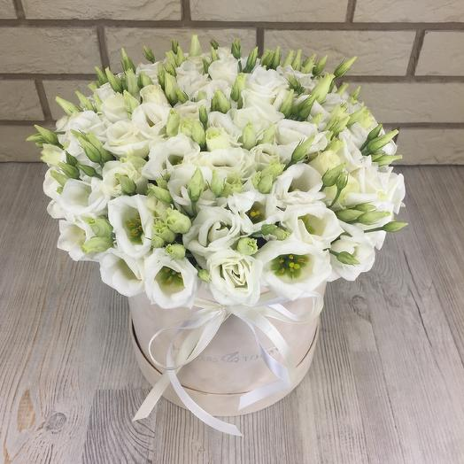Белые эустомы в бархатной коробке: букеты цветов на заказ Flowwow