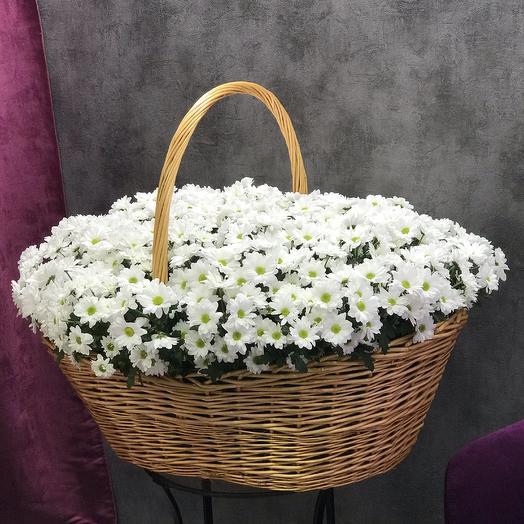 Мега корзина из ромашек: букеты цветов на заказ Flowwow