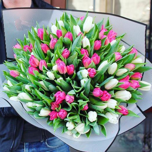35 микс тюльпан