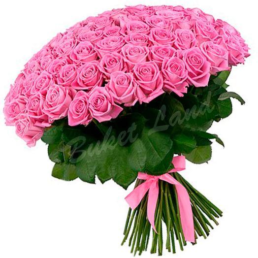 Роза Аква 60 см в крафте 101 шт