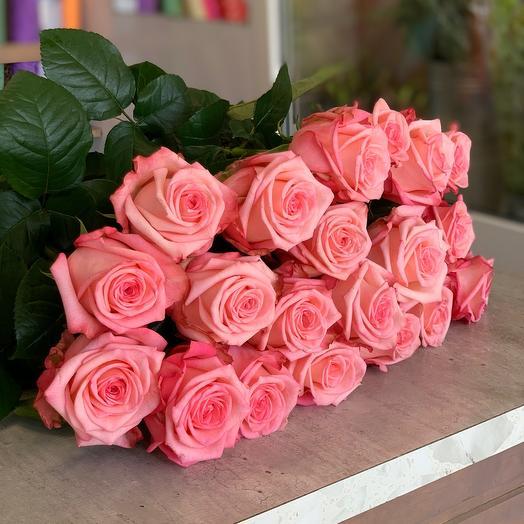 19 Роза 💗