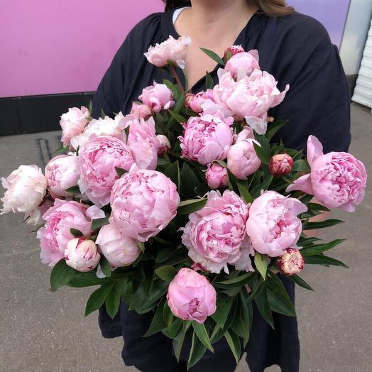 Букет из 51 пиона: букеты цветов на заказ Flowwow
